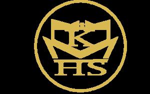 logo design by Bluribbon technologies